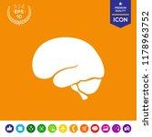 human brain icon | Shutterstock .eps vector #1178963752