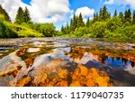 forest river water view. river...   Shutterstock . vector #1179040735