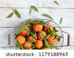tangerines  oranges  mandarins  ... | Shutterstock . vector #1179188965