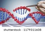 genetic engineering  gmo and...   Shutterstock . vector #1179311608