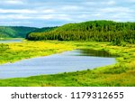 summer green nature river...   Shutterstock . vector #1179312655