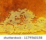 bee honeycombs.the structure of ...   Shutterstock . vector #1179560158