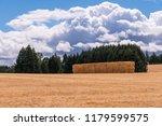 An Open Field In Rural Oregon...