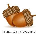 autumn oak acorns illustration... | Shutterstock . vector #1179753085