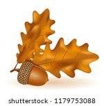 autumn oak acorns with leaves... | Shutterstock . vector #1179753088