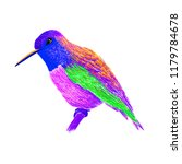 hummingbird with colorful... | Shutterstock . vector #1179784678