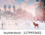 Lonely Noble Deer Mail With Bi...