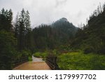 path in the rain in the valley... | Shutterstock . vector #1179997702