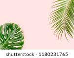tropical palm leaves monstera... | Shutterstock . vector #1180231765