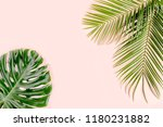 tropical palm leaves monstera... | Shutterstock . vector #1180231882