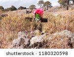 antique cemetery located at san ... | Shutterstock . vector #1180320598