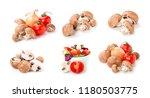 fresh champignon. group of...   Shutterstock . vector #1180503775