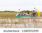 everglades  florida  usa  ... | Shutterstock . vector #1180551055