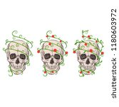 three skulls and plants | Shutterstock .eps vector #1180603972