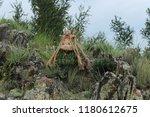 handmade woolen doll of luck on ... | Shutterstock . vector #1180612675