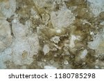concrete wall with texture | Shutterstock . vector #1180785298