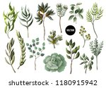 set of greenery leaves herb and ... | Shutterstock .eps vector #1180915942