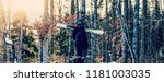 skier holding ski and looking... | Shutterstock . vector #1181003035