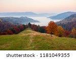beautiful autumn sunrise... | Shutterstock . vector #1181049355