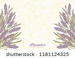 engraved lavender flowers on...   Shutterstock . vector #1181124325
