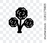 broccoli vector icon isolated... | Shutterstock .eps vector #1181175805