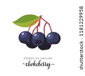 blue chokeberry berry flat icon ... | Shutterstock . vector #1181229958
