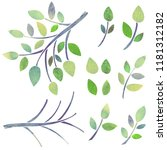 watercolor branches  green... | Shutterstock . vector #1181312182