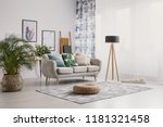 pouf and plant near settee with ... | Shutterstock . vector #1181321458