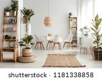 plants on shelves and rug in... | Shutterstock . vector #1181338858