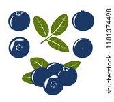 bilberry. blue berries of...   Shutterstock .eps vector #1181374498