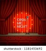 Open Mic Night Live Show...