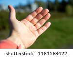 a mans outstretched left hand ... | Shutterstock . vector #1181588422