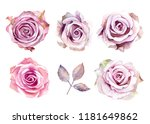 Watercolor Lilac Roses Painted...