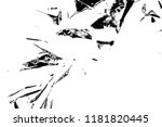 abstract background. monochrome ... | Shutterstock . vector #1181820445