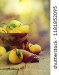 autumn nature concept. fall... | Shutterstock . vector #1181852095