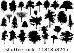 set of tree silhouettes  vector ...   Shutterstock .eps vector #1181858245