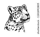 head leopard tattoo | Shutterstock . vector #1181892805