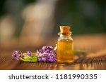lavender essential oil in a... | Shutterstock . vector #1181990335
