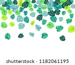 turquoise tropical jungle... | Shutterstock .eps vector #1182061195