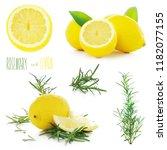 rosemary and lemons | Shutterstock . vector #1182077155