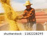 senior farmer in tractor... | Shutterstock . vector #1182228295