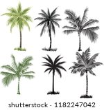 coconut palm trees  set on white | Shutterstock .eps vector #1182247042