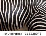 Close Up Of Stripes On Zebra Fur