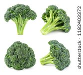 Broccoli. Broccoli Isolated On...