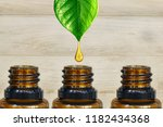 pure and organic essential oil... | Shutterstock . vector #1182434368