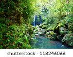Tropical jangles with waterfall and lake. Maui. Hawaii. - stock photo