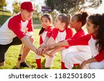 girl baseball team kneeling... | Shutterstock . vector #1182501805