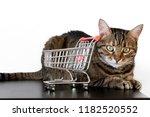 pink and metal shopping cart... | Shutterstock . vector #1182520552