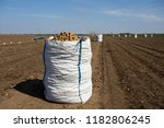close up of potatoes in sack in ... | Shutterstock . vector #1182806245