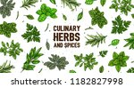 hand drawn frame with culinary...   Shutterstock .eps vector #1182827998